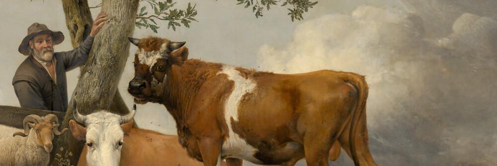 Papier Peint Panoramique vaches