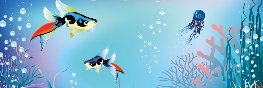 Papier Peint Panoramique poisson