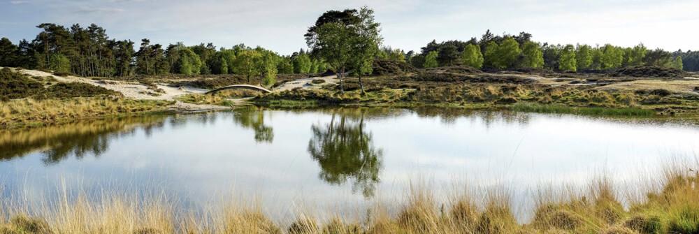 Wallexclusive Premium Landscapes