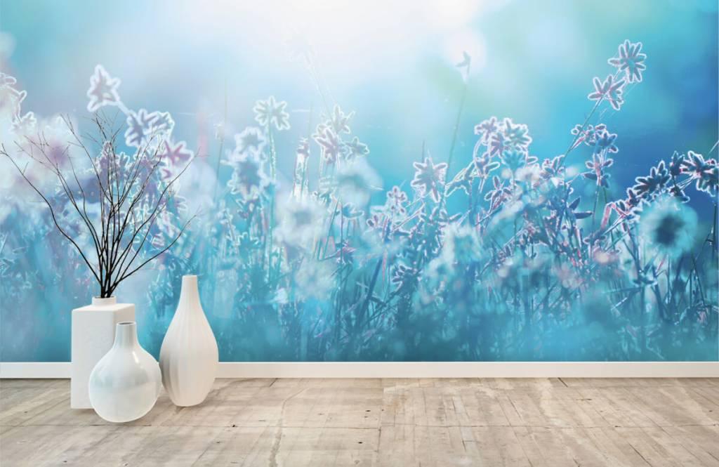 Flower fields - Fleurs au soleil - Chambre à coucher 1