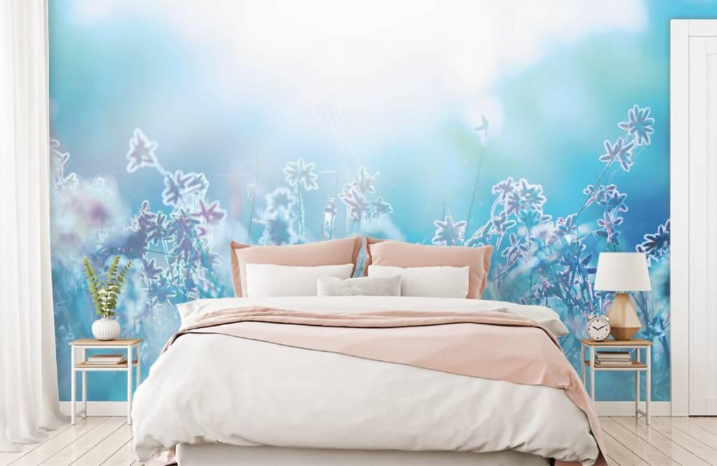 Flower fields - Fleurs au soleil - Chambre à coucher 2