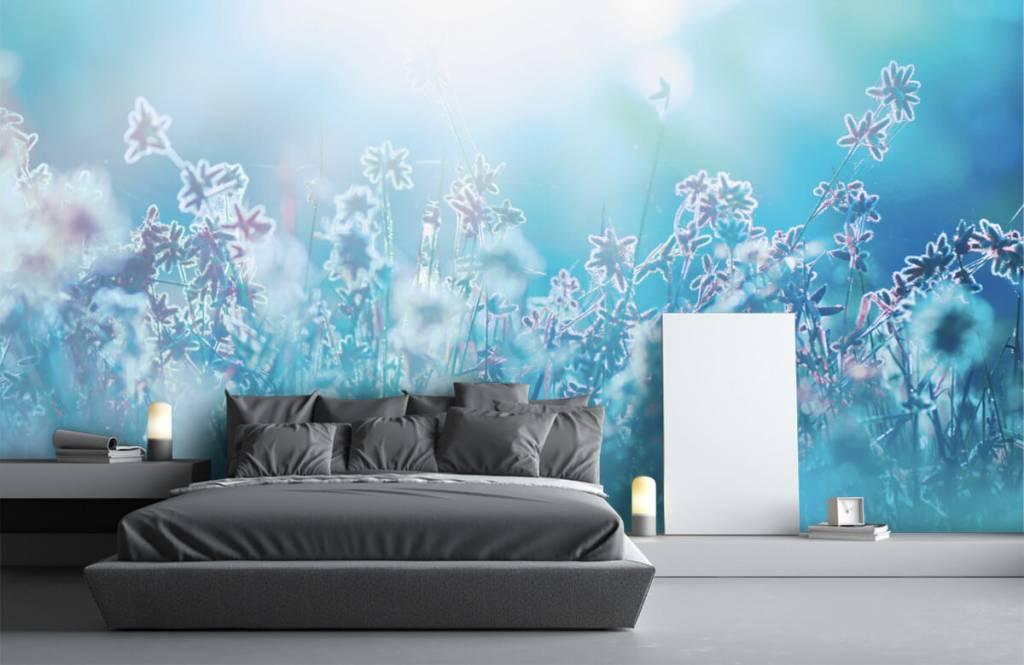 Flower fields - Fleurs au soleil - Chambre à coucher 5
