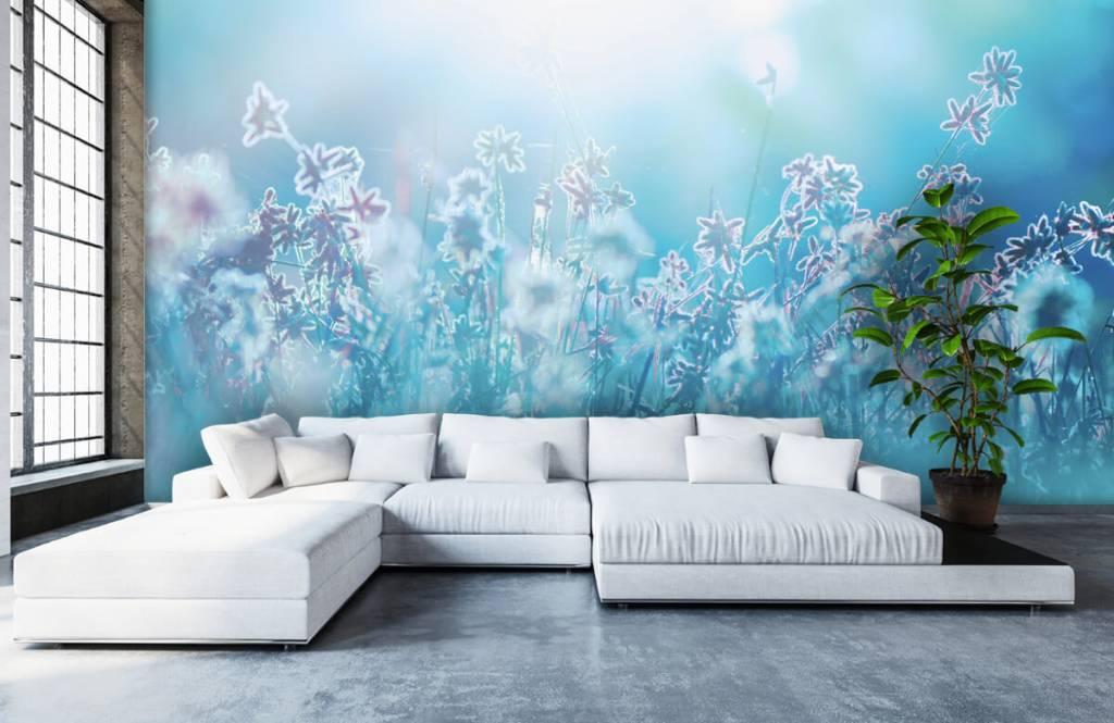 Flower fields - Fleurs au soleil - Chambre à coucher 6