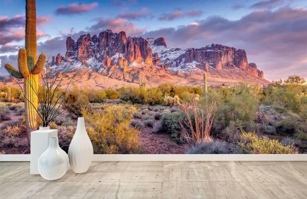 Montagnes - Cactus dans un paysage de montagne - Salle de séjour 1
