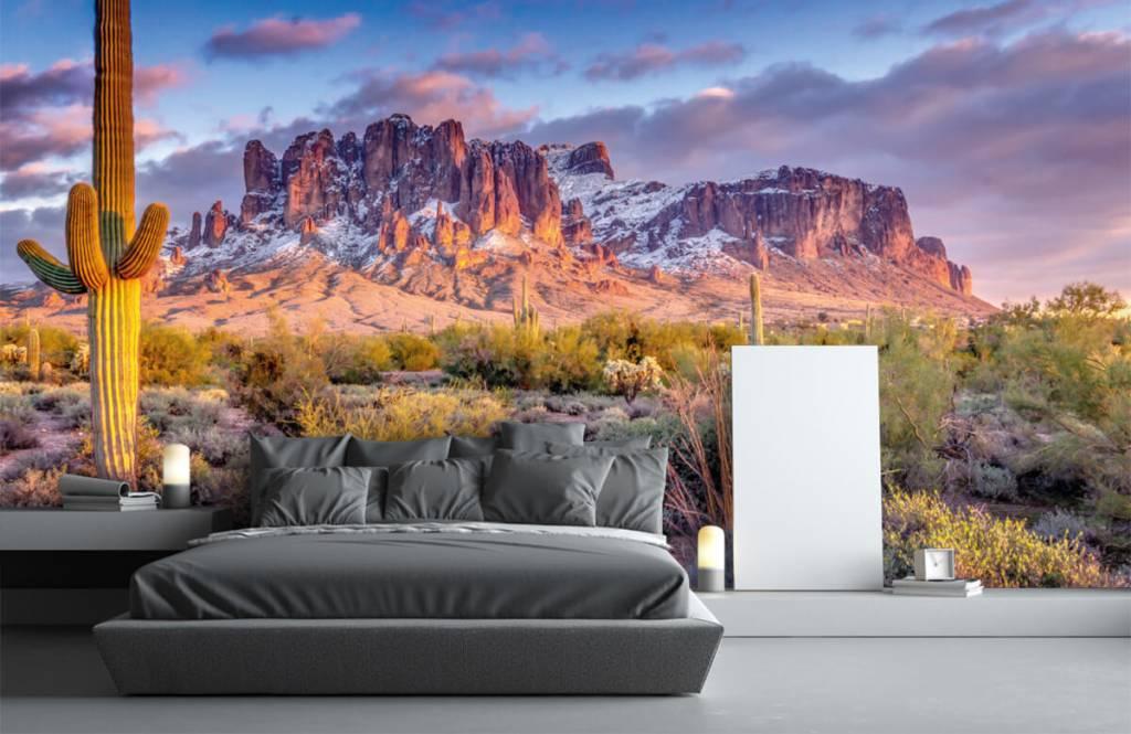 Montagnes - Cactus dans un paysage de montagne - Salle de séjour 4