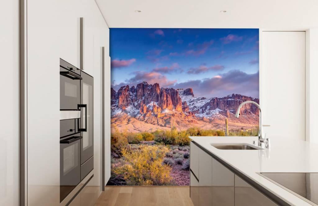 Montagnes - Cactus dans un paysage de montagne - Salle de séjour 5