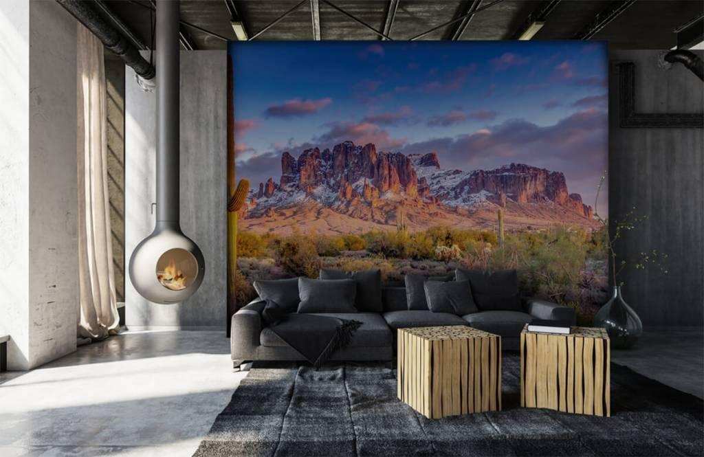 Montagnes - Cactus dans un paysage de montagne - Salle de séjour 7