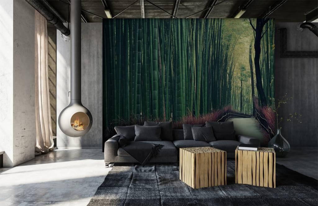 Papier peint de la forêt - Forêt de bambous - Hall d'entrée 6