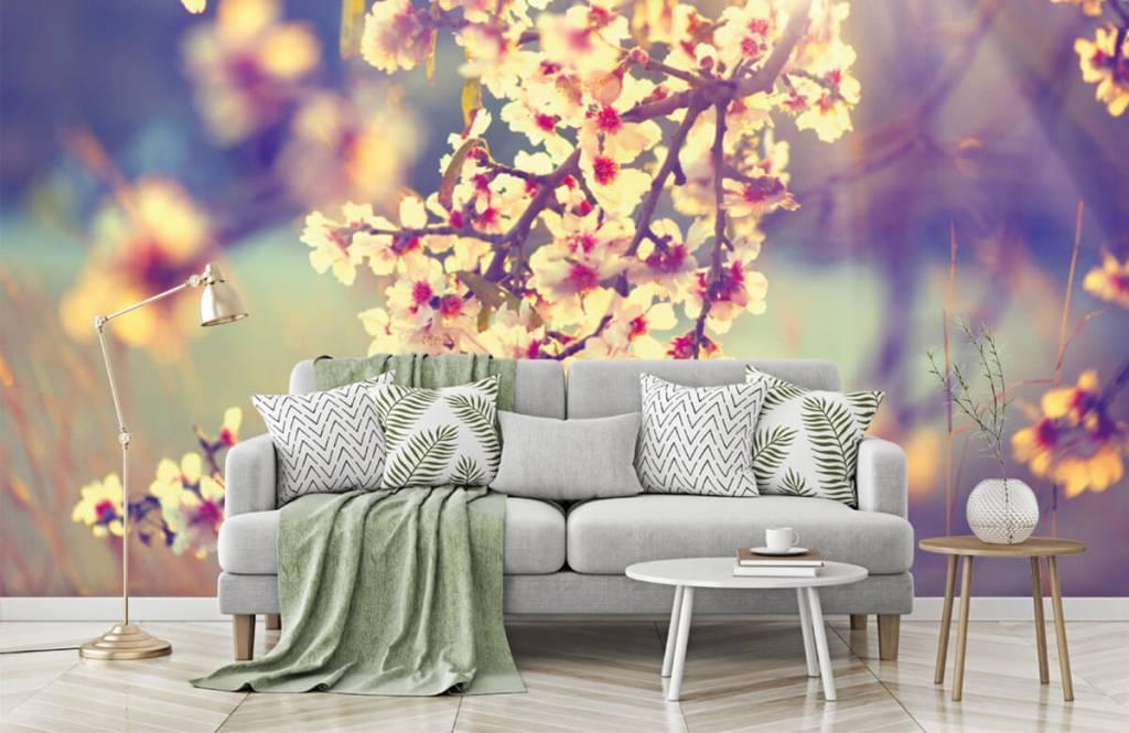 Blossom - Arbre à fleurs - Chambre à coucher 1