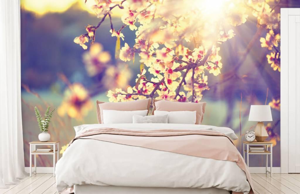 Blossom - Arbre à fleurs - Chambre à coucher 2