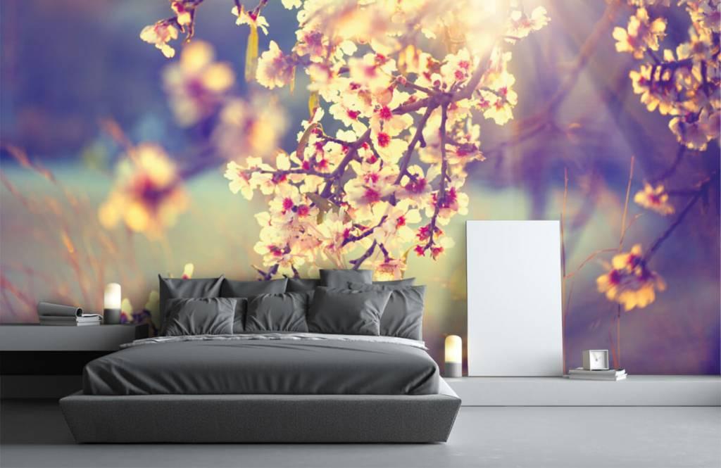 Blossom - Arbre à fleurs - Chambre à coucher 3