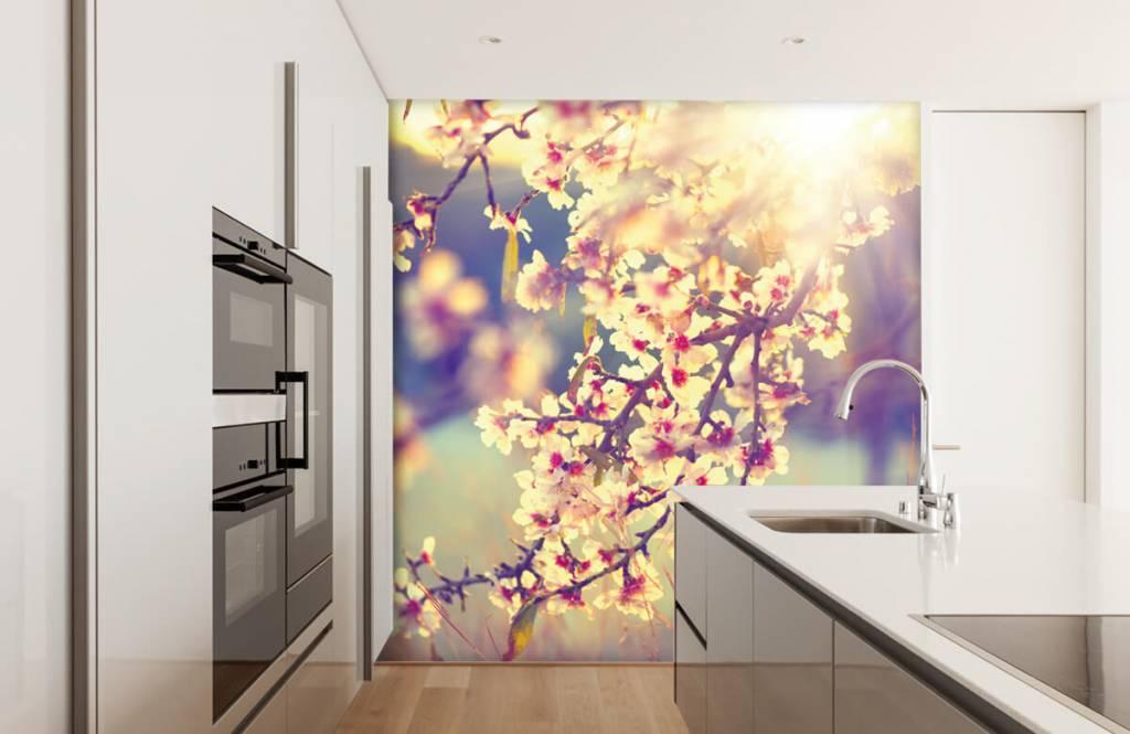 Blossom - Arbre à fleurs - Chambre à coucher 4