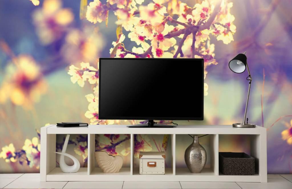 Blossom - Arbre à fleurs - Chambre à coucher 5