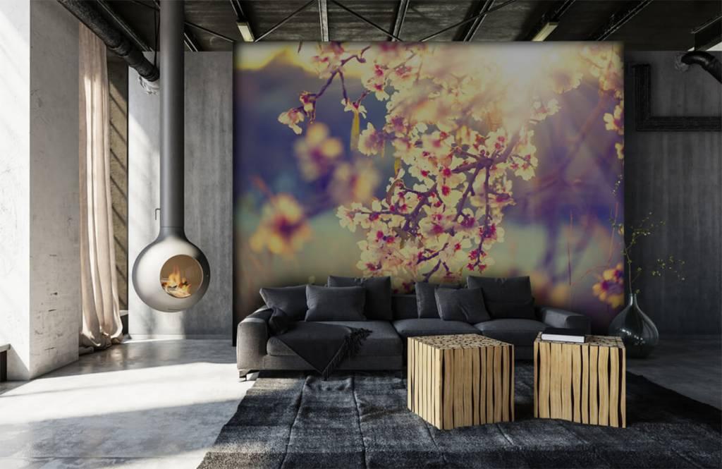 Blossom - Arbre à fleurs - Chambre à coucher 7
