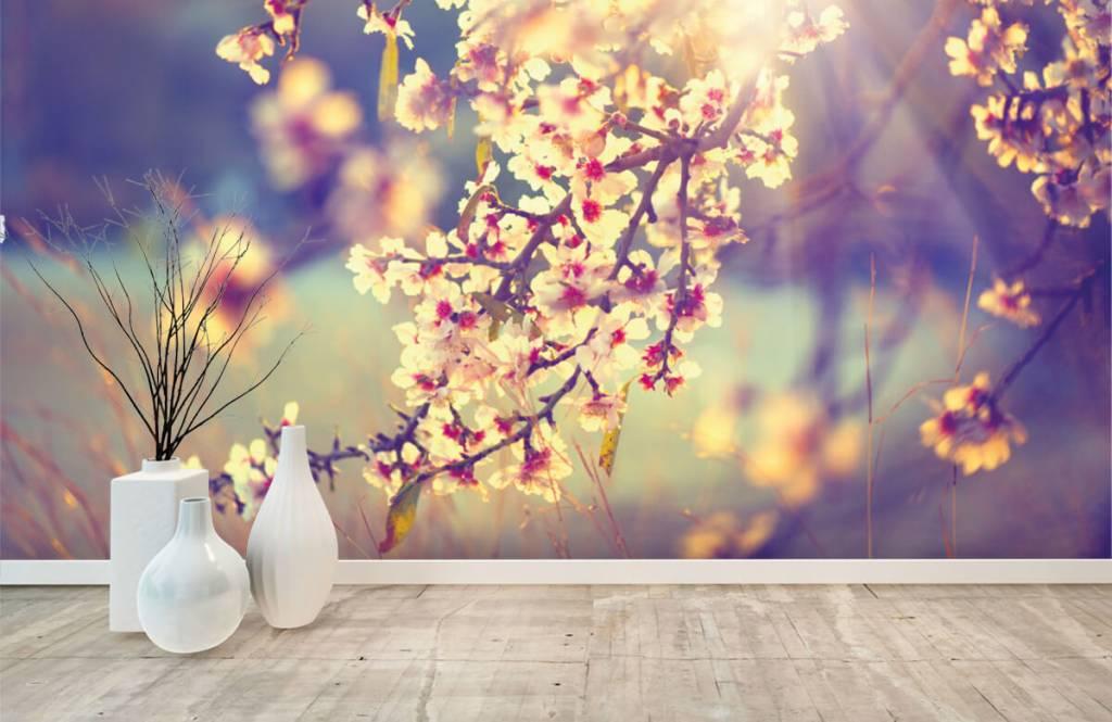 Blossom - Arbre à fleurs - Chambre à coucher 8