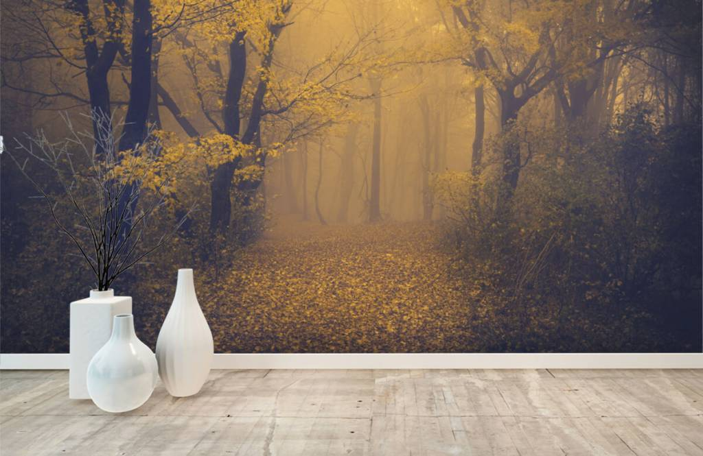 Papier peint de la forêt - Forêt sombre - Chambre à coucher 8