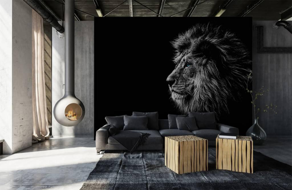 Safari Animals - Lion aux yeux bleus - Chambre d'adolescent 1
