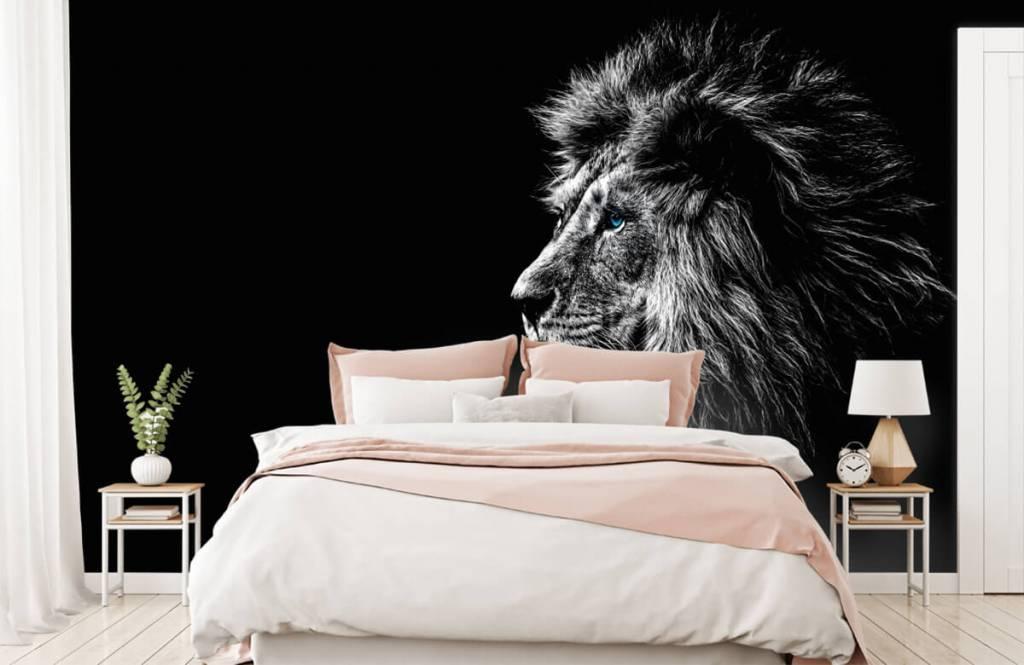 Safari Animals - Lion aux yeux bleus - Chambre d'adolescent 2