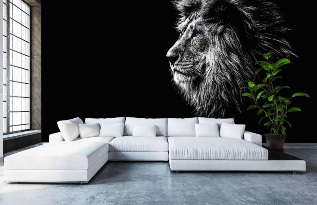 Safari Animals - Lion aux yeux bleus - Chambre d'adolescent 6