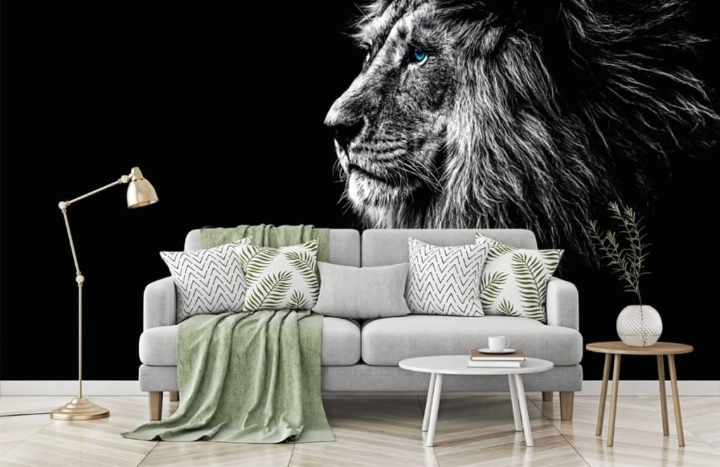 Safari Animals - Lion aux yeux bleus - Chambre d'adolescent 7