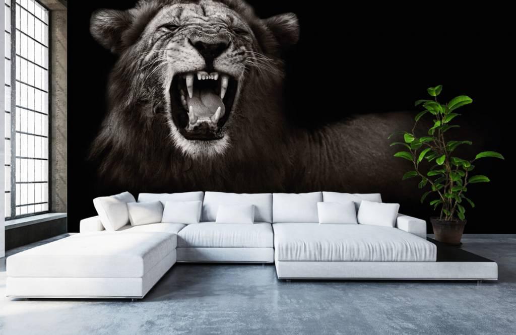 Wild Animals - Lionne - Chambre d'adolescent 1