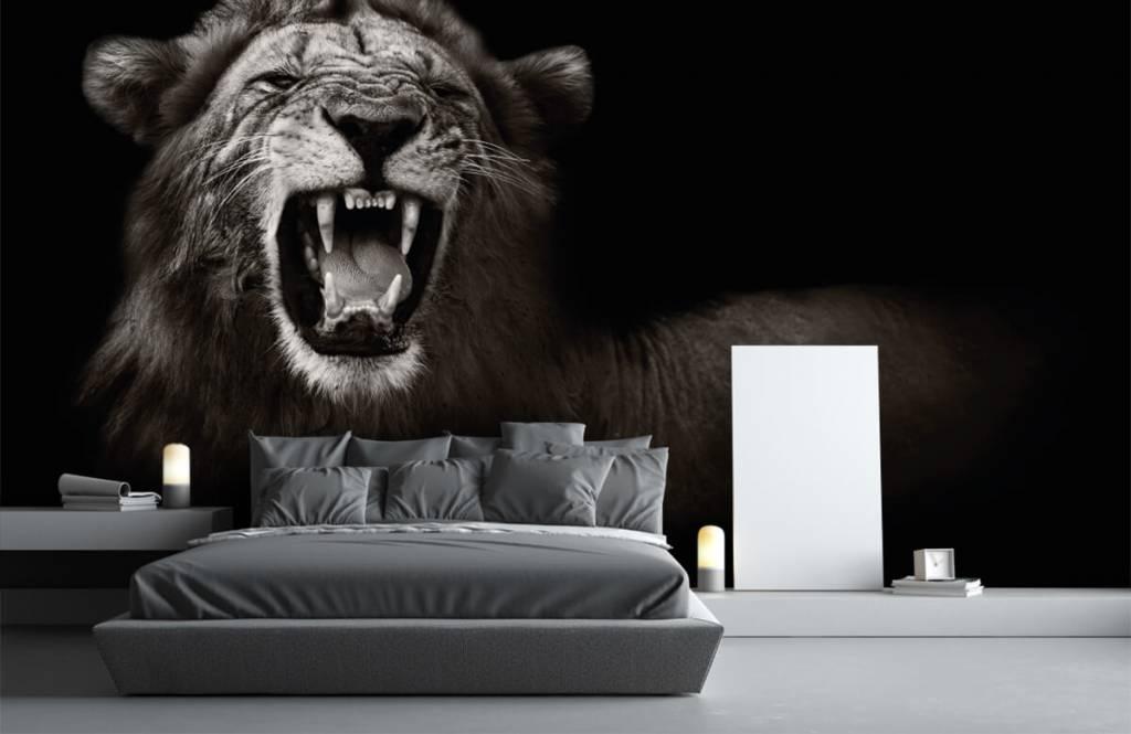 Wild Animals - Lionne - Chambre d'adolescent 3