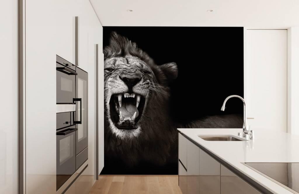 Wild Animals - Lionne - Chambre d'adolescent 4