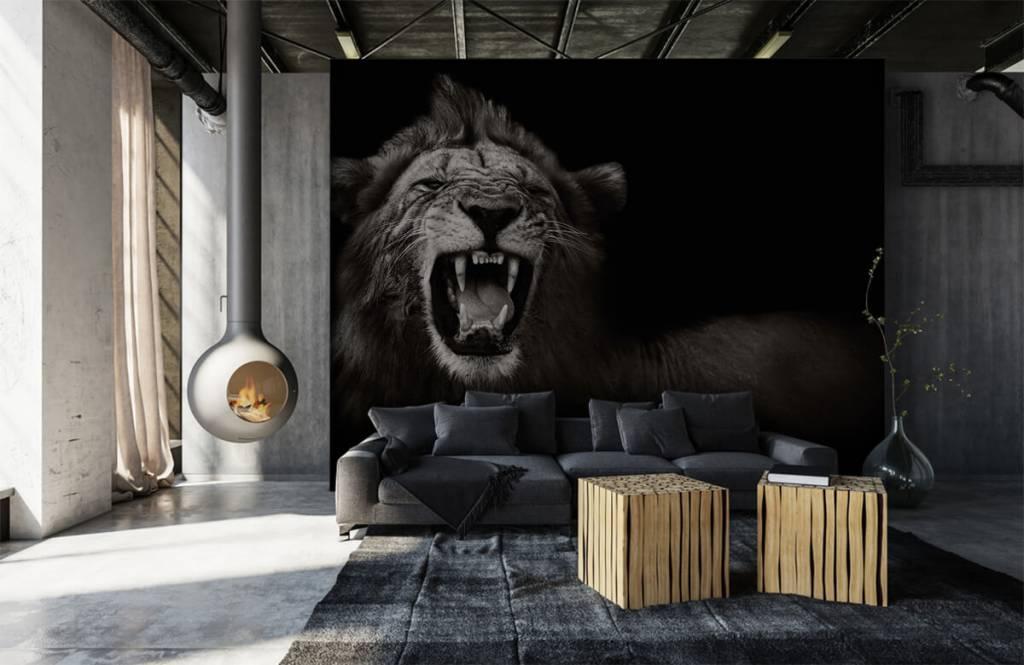 Wild Animals - Lionne - Chambre d'adolescent 6