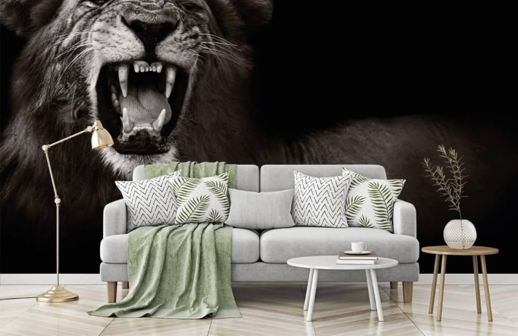 Wild Animals - Lionne - Chambre d'adolescent 7