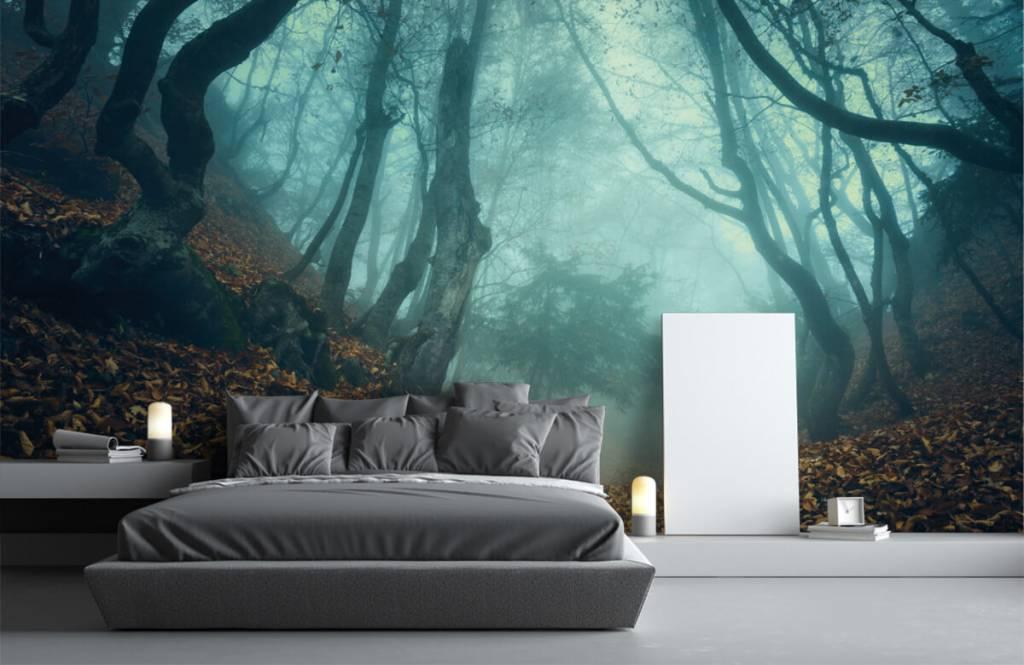 Papier peint de la forêt - Forêt mystérieuse - Chambre à coucher 3