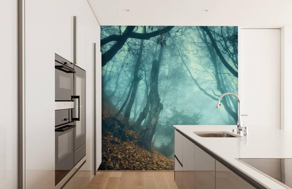 Papier peint de la forêt - Forêt mystérieuse - Chambre à coucher 4