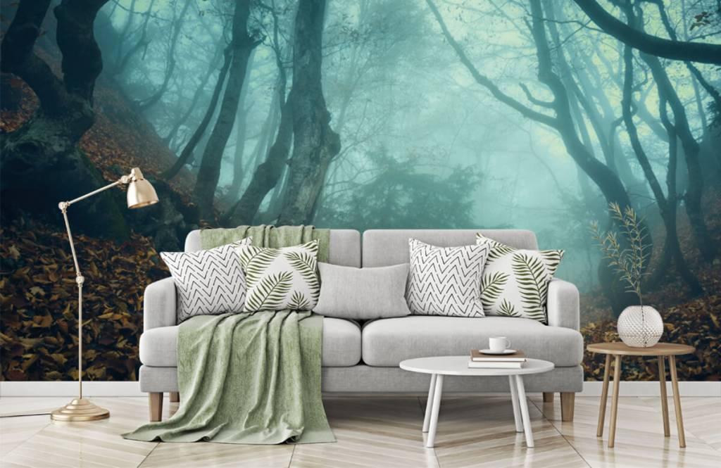Papier peint de la forêt - Forêt mystérieuse - Chambre à coucher 7