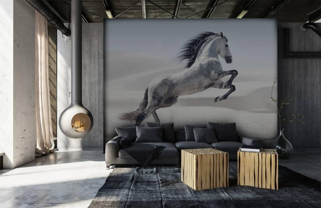 Horses - Cheval cabré - Chambre des enfants 1