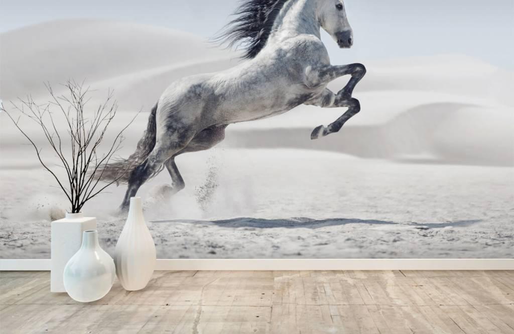Horses - Cheval cabré - Chambre des enfants 2