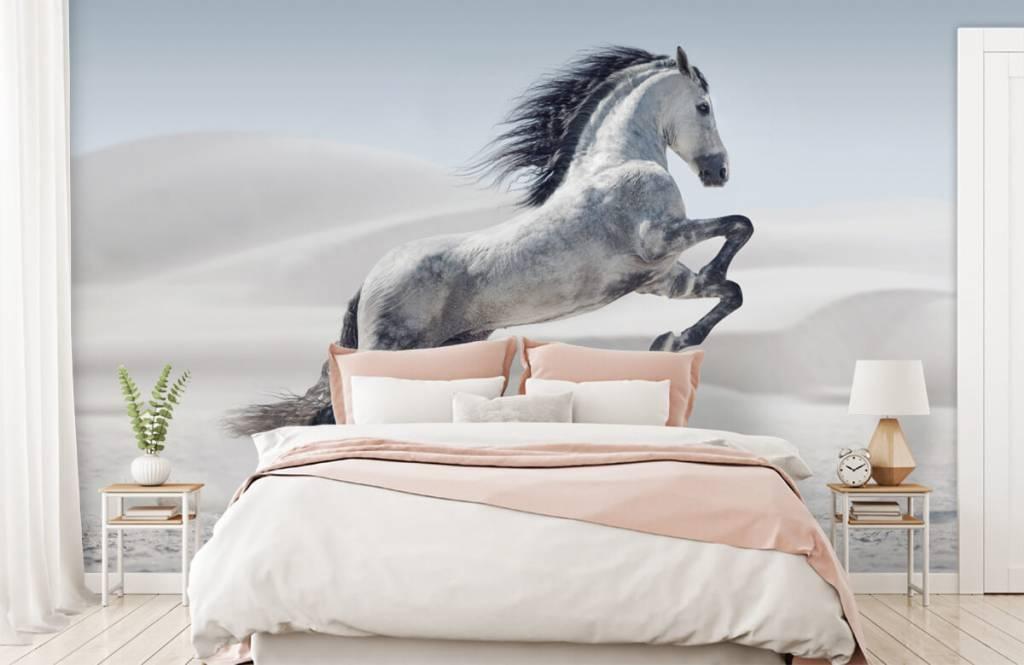 Horses - Cheval cabré - Chambre des enfants 3