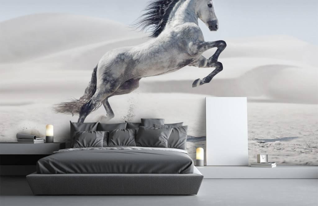 Horses - Cheval cabré - Chambre des enfants 4