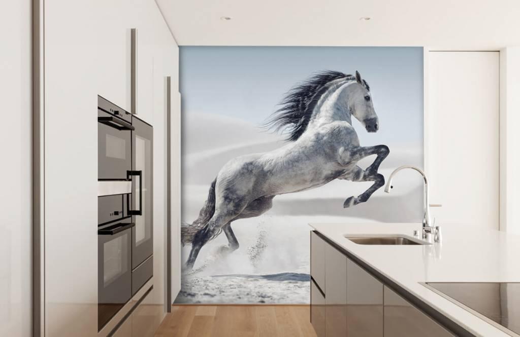 Horses - Cheval cabré - Chambre des enfants 5