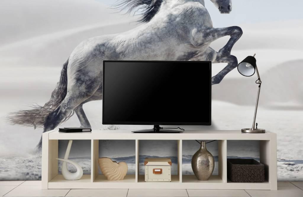 Horses - Cheval cabré - Chambre des enfants 6