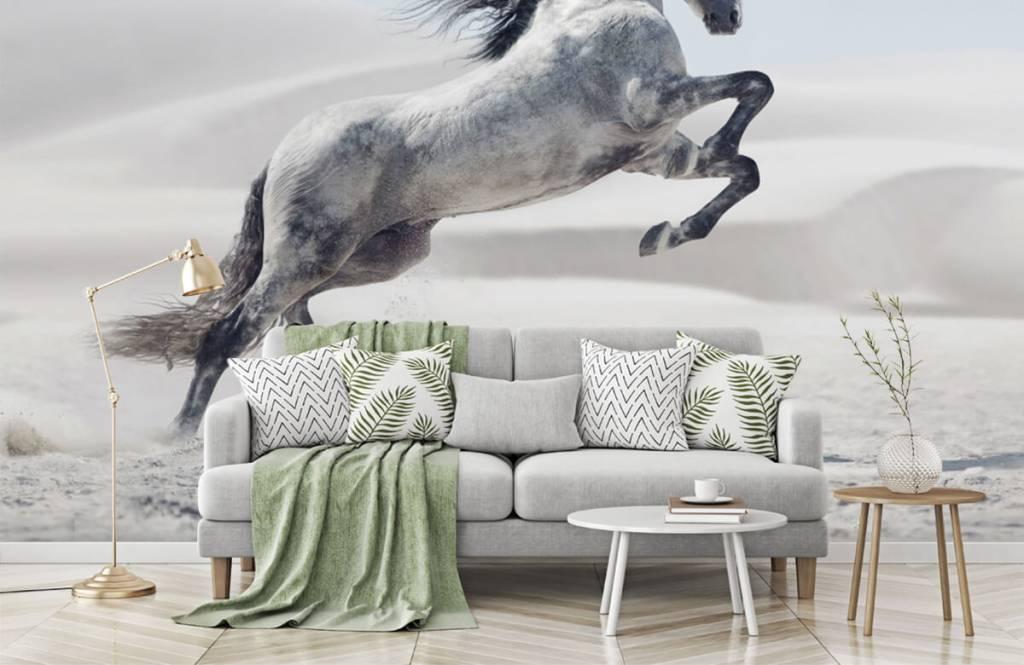 Horses - Cheval cabré - Chambre des enfants 8