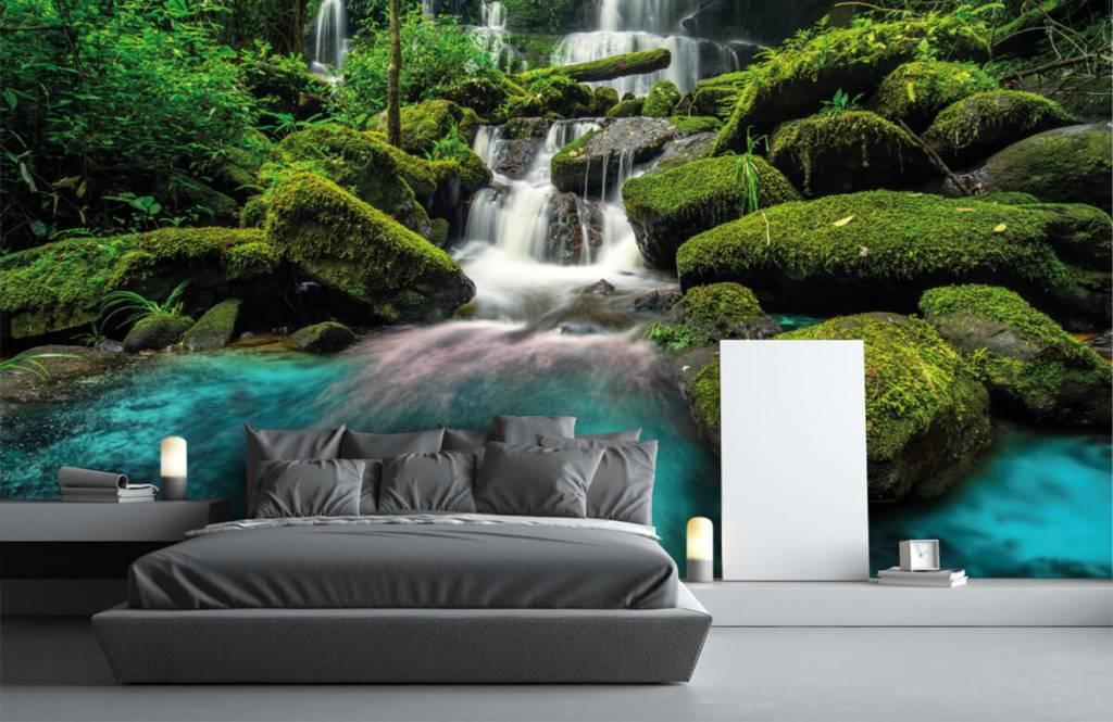Cascades - Chute d'eau dans une jungle - Chambre d'hobby 1