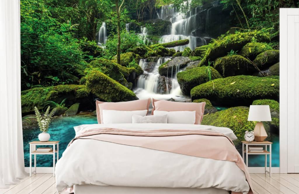 Cascades - Chute d'eau dans une jungle - Chambre d'hobby 2