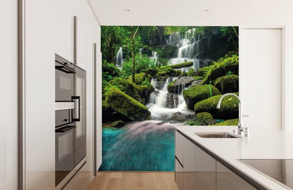 Cascades - Chute d'eau dans une jungle - Chambre d'hobby 3