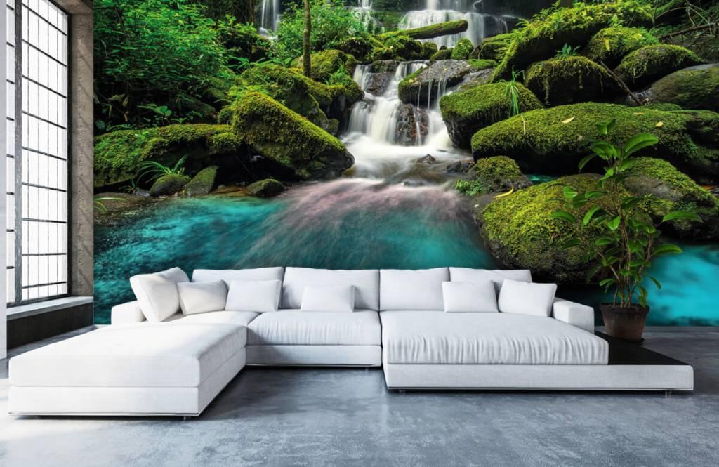 Cascades - Chute d'eau dans une jungle - Chambre d'hobby 5
