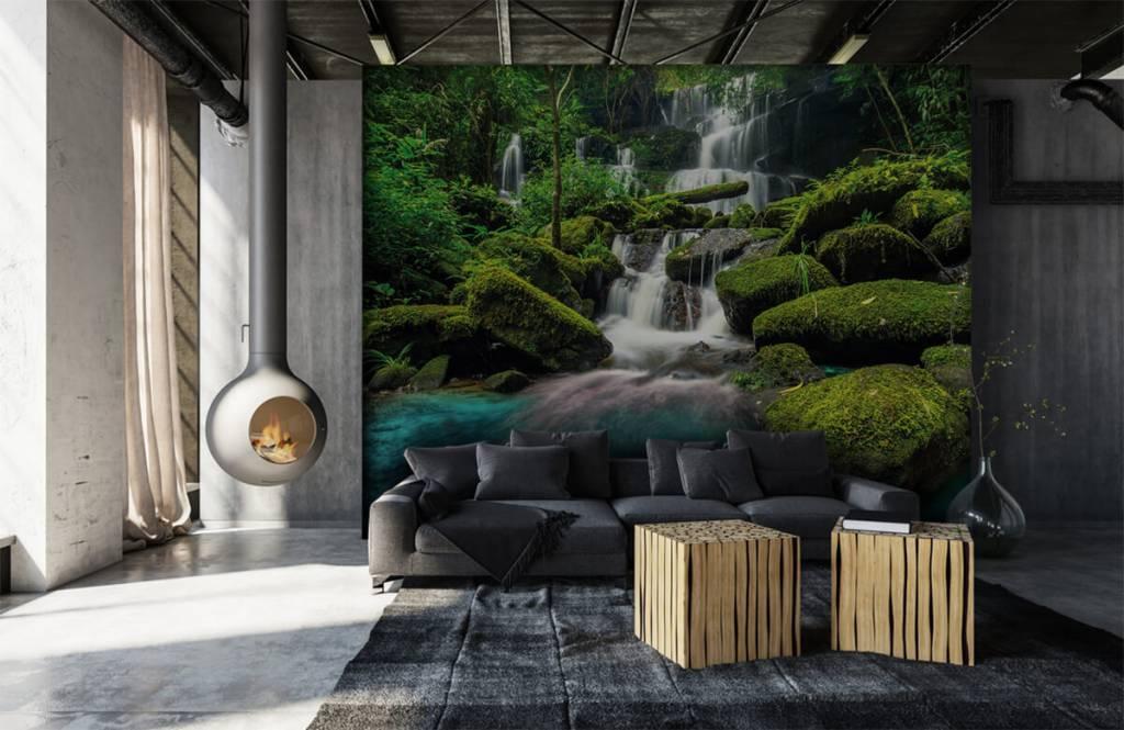 Cascades - Chute d'eau dans une jungle - Chambre d'hobby 6