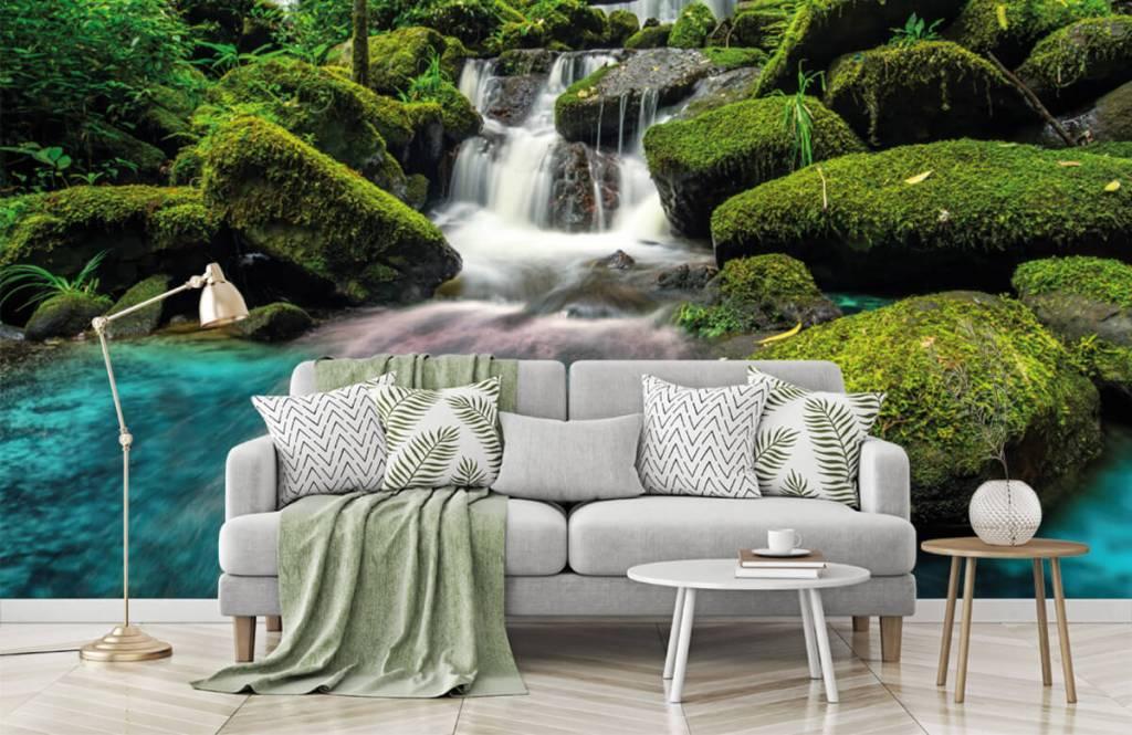 Cascades - Chute d'eau dans une jungle - Chambre d'hobby 7
