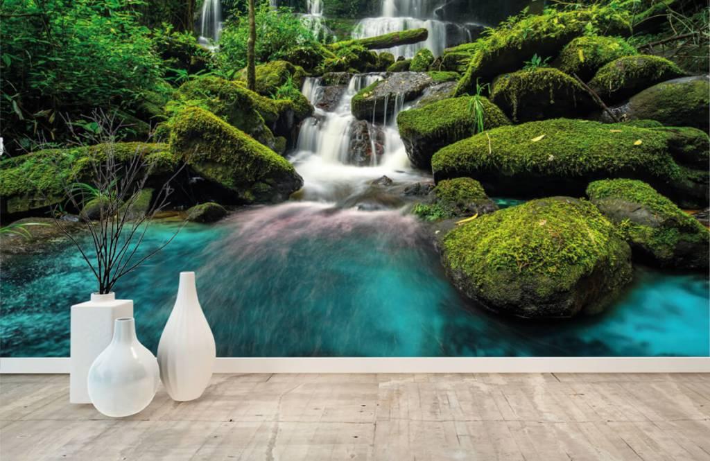 Cascades - Chute d'eau dans une jungle - Chambre d'hobby 8
