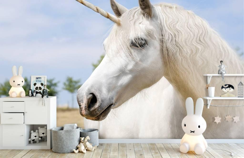 Horses - Licorne blanche - Chambre des enfants 1