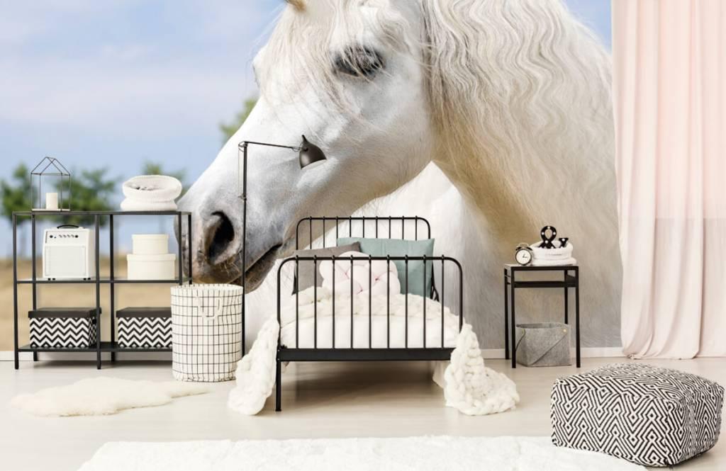 Horses - Licorne blanche - Chambre des enfants 2