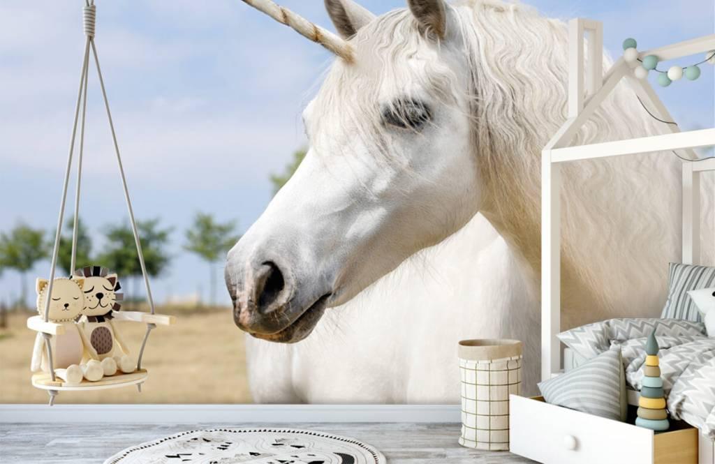 Horses - Licorne blanche - Chambre des enfants 4