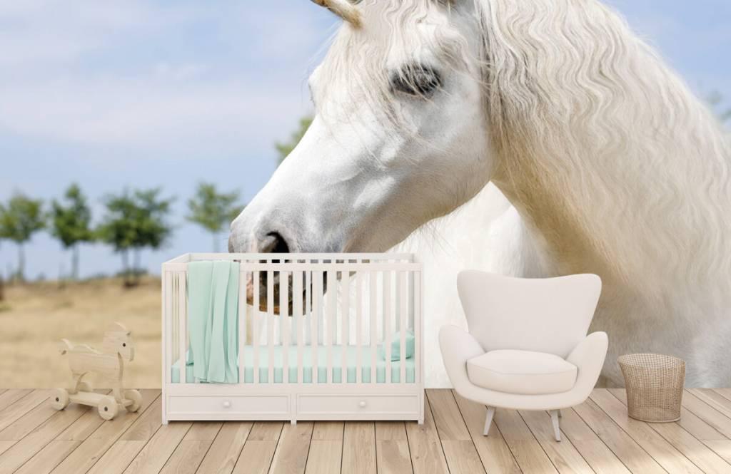 Horses - Licorne blanche - Chambre des enfants 5